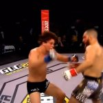 Top 30 Exciting Knockouts in the History of MMA